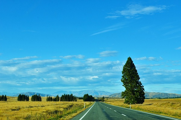 highway-new zealand